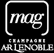 ar_lenoble19_blocmarque_agrafe_mag_bblanc