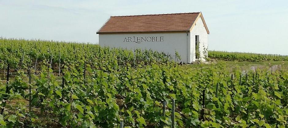Le Figaro Magazine aime AR Lenoble Grand Cru Blanc de Blancs Chouilly Millésimé 2008 !
